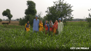 Stroll through the fields in our Amritsar Village Tour