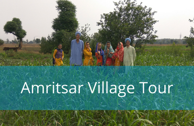 Amritsar Village Tour - Amritsar country side experience of making roti, tractor riding in the fields and punjabi culture