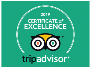 TripAdvisor Certificate of Excellence - City On Pedals