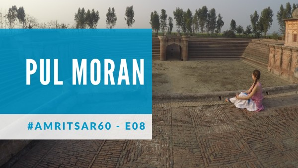 Cover photo for Pul Moran
